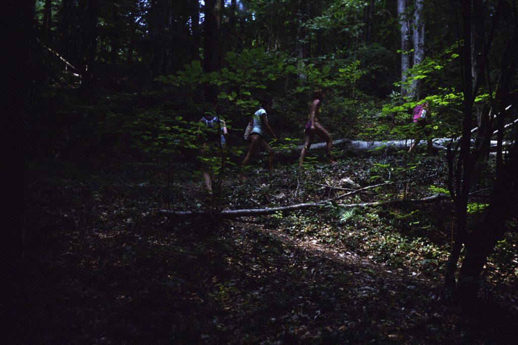 Kdysi tu byl les